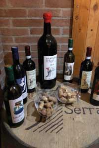 Bottiglie-Vino-Val-Serra-San-Damiano