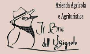 Logo-Agriturismo-Il-Bric-dell'Usignolo