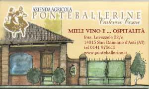 Logo Ponte Ballerine San Damiano