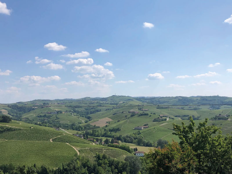 Panorama Castagnole delle Lanze