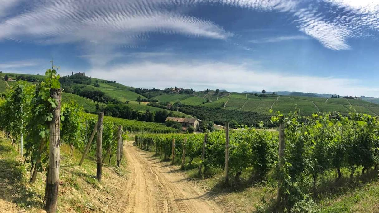 Sentiero Vitivinicolo Piemonte