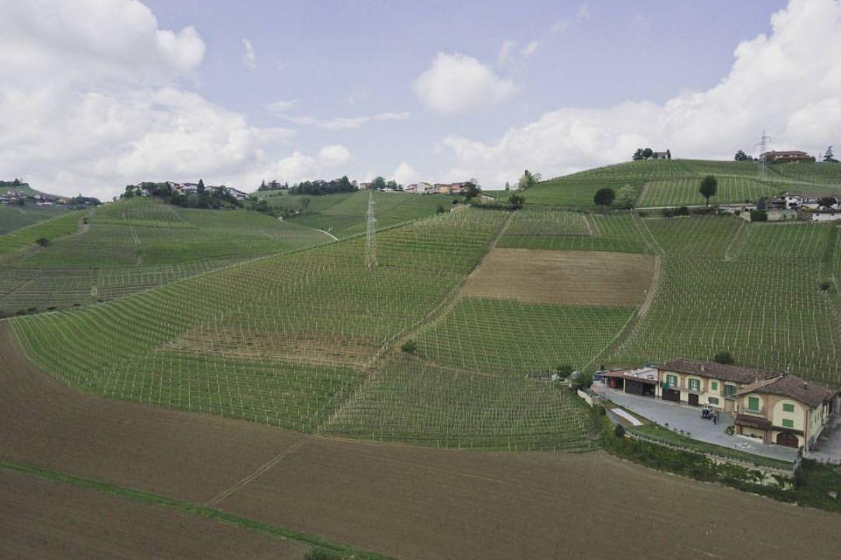 Azienda Vacca